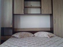 Apartman Vasile Alecsandri, Nord Apartman