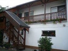 Accommodation Rádfalva, Violet Guesthouse