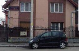 Vilă Tomești, Vila Royal
