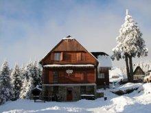 Accommodation Capalnita (Căpâlnița), Vitus Guesthouse