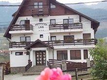 Accommodation Racovița, Lais Guesthouse