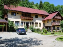 Accommodation Drumul Carului, Maria Guesthouse