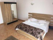 Accommodation Timișu de Jos, Elite Gasthaus