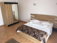 Accommodation Tohanu Nou, Elite Gasthaus