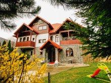Vilă Fieni cu Tichete de vacanță / Card de vacanță, Casa Natalia