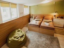 Accommodation Florești, Király Studio Apartment