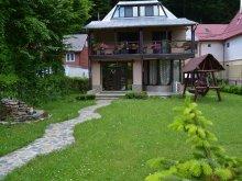Casă de vacanță Șerbești, Casa Rustic