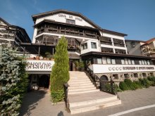 Accommodation Dolj county, Carul din Stele B&B