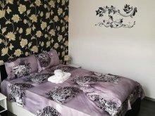 Accommodation Hunedoara, White Black Apartment