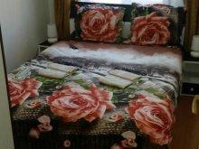 Accommodation Hunedoara county, Honey Apartment