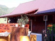 Chalet Minișu de Sus, Brazilor Guesthouse