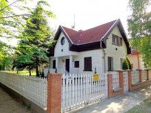 Accommodation Kiskunhalas, Dobos Guesthouse