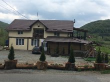 Bed & breakfast Romania, La Ionică Guesthouse