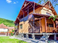 Accommodation Gurghiu, Bogas Guesthouse