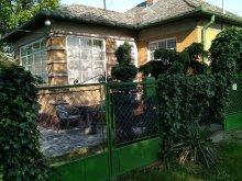 Accommodation Ordacsehi, Codini Apartment