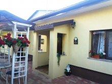 Accommodation Burduca, Bunicilor Guesthouse