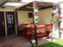 Guesthouse Ștefeni, Casuța Noastră Guesthouse