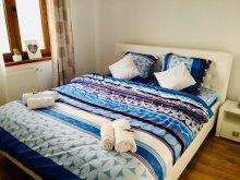 Cazare Erdélyi-Hegyalja, Apartament NatyCo Ambient
