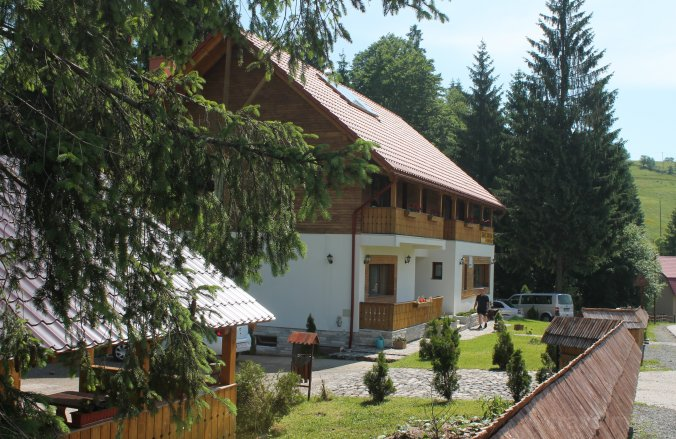 Arnica Montana Ház Arieșeni