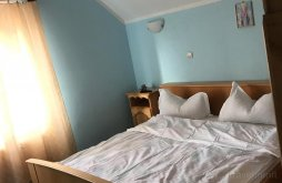 Accommodation Botiza, Costinar Aurica B&B