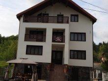 Szállás Máramaros (Maramureş) megye, Simi Panzió