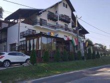 Apartament Roșoveni, Pensiunea Pomi
