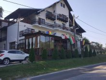 Bed & breakfast Rugetu (Mihăești), Pomi B&B