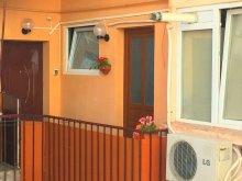 Apartament România, Garsoniera Amzei