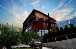 Accommodation Valea Mare (Cândești), Moroeni Guesthouse