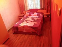 Cazare Mangalia, Apartament Alina