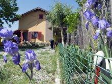 Casă de vacanță județul Tulcea, Casa Doina
