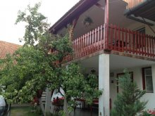 Accommodation Capu Dealului, Piroska Guesthouse