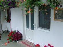 Apartament Ciumbrud, Pensiunea Piroska