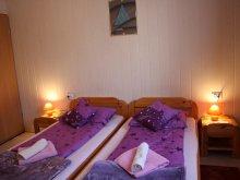 Accommodation Egerszalók, Andras Apartments