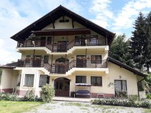 Accommodation Braşov county, Dalia Guesthouse