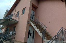 Apartman Chegea, Irina Villa