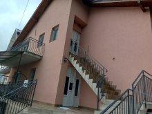 Vilă Cetariu, Casa Irina