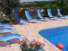 Cazare Transdanubia de Sud, Casa de vacanță Horcholond