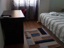 Accommodation Constanța, Sat Vacanță Apartment