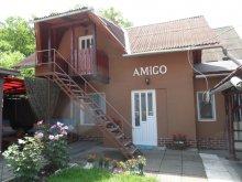 Casă de oaspeți județul Mureş, Casa de oaspeți Amigo
