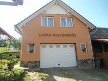 Chalet Odorheiu Secuiesc, Villa Laura