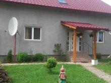Vendégház Bălănești, Ungurán lak