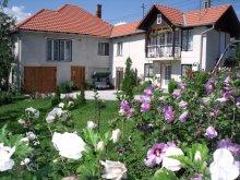 Accommodation Abrămuț, Leda Guesthouse