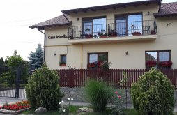 Villa Szatmárhegy (Viile Satu Mare), Casa Irinella Ház
