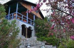 Kulcsosház Strejnicu, Coolcush Cabana & Garden