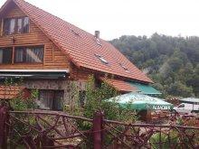 Pensiune Bârgăuani, Casa Ioana