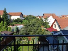 Accommodation Rădaia, Smart Apartment