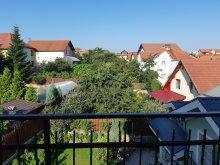 Accommodation Săliștea Veche, Smart Apartment