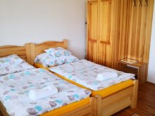 Accommodation Nagydobos, Főnix Park Apartment House