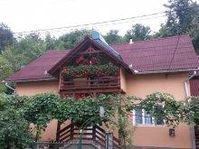 Casă de oaspeți județul Mureş, Casa Kiss